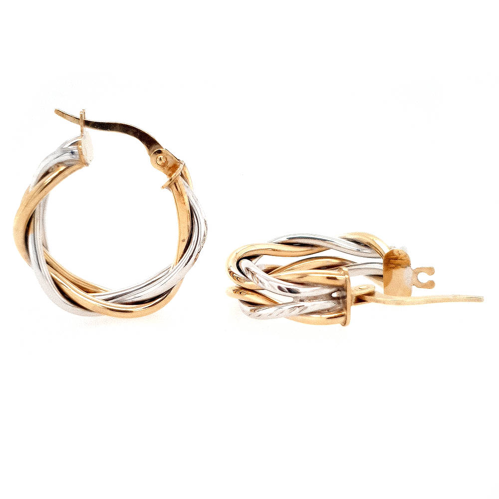 2-Tone Gold Earrings